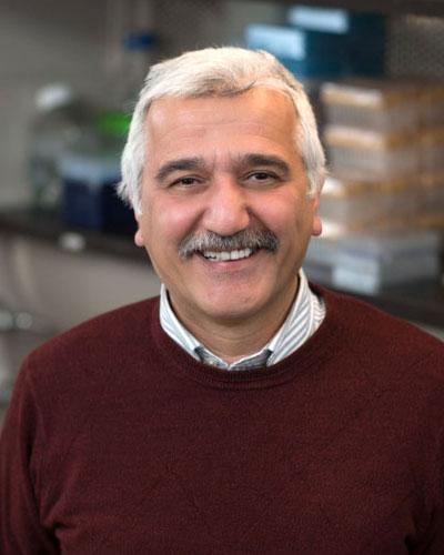 M. Hakan Ozdener