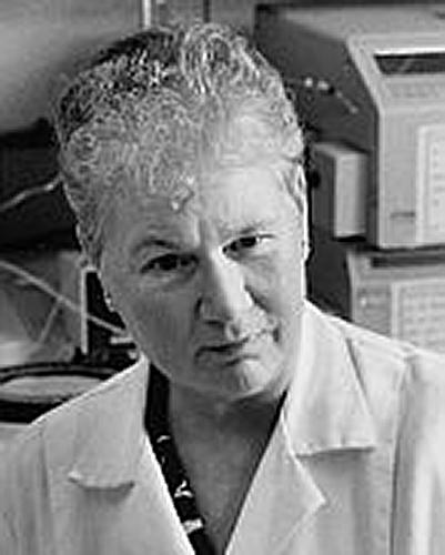 Gisela Epple