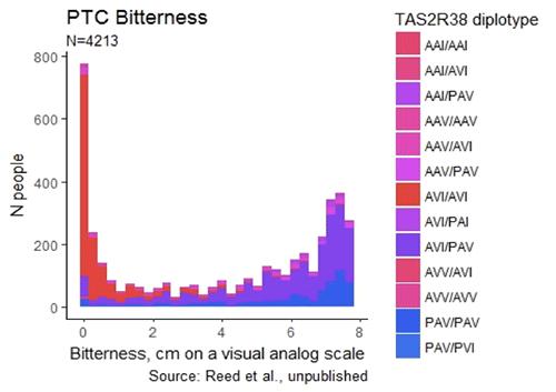 Reed PTC bitterness TAS2R38 graph