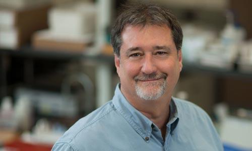 Bruce A. Kimball, PhD